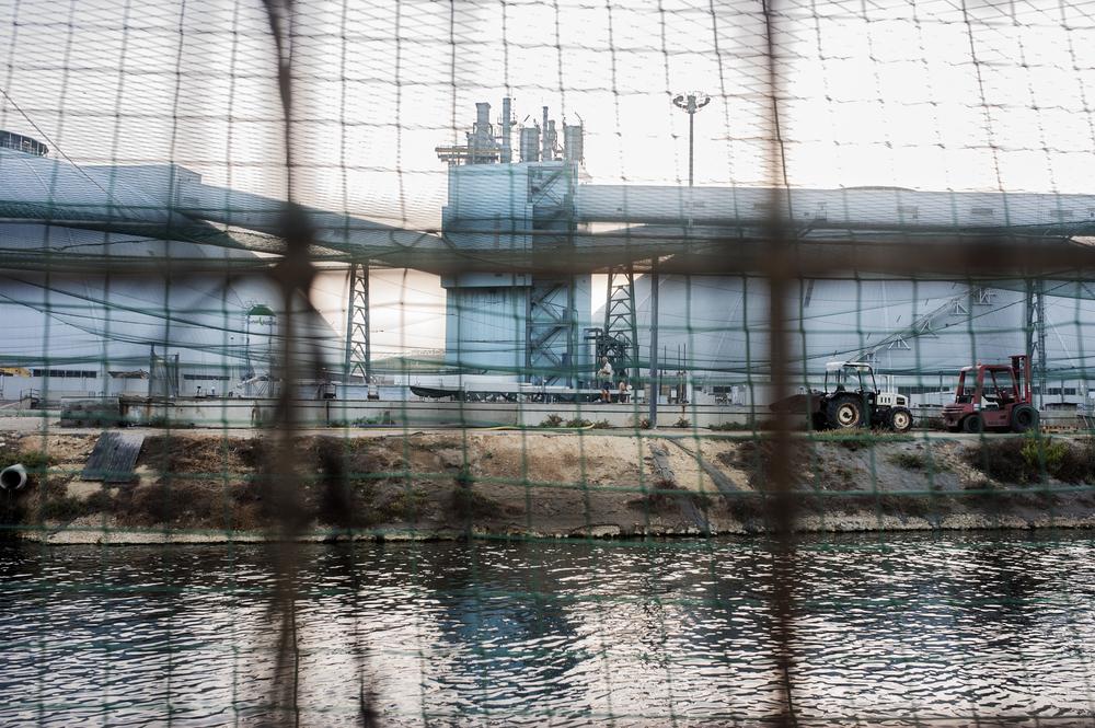 Una delle innovazioni della centrale è il riutilizzo e riciclaggio degli scarti del ciclo produttore di energia. Ad esempio le acque calde che escono dalla centrale vengono canalizzate in vasche adibite all'itticoltura. (Giulia Morelli)