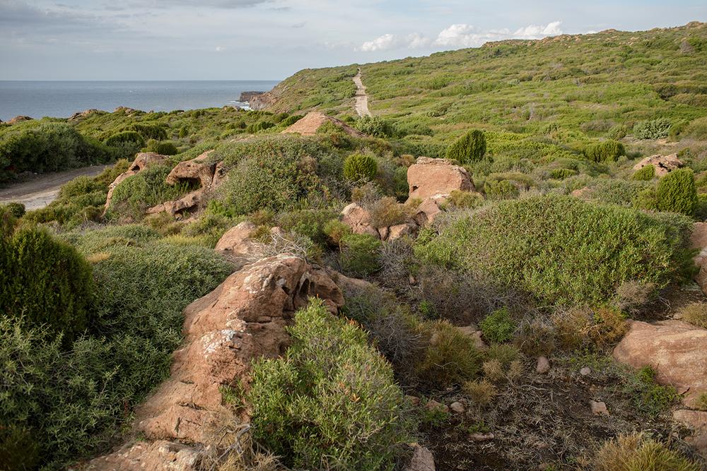 Questo sentiero, che da Portoscuso conduce a Capo Altano - promontorio costituito da rocce vulcaniche e da una vegetazione di lentisco e ginepro coccolone - è solo un piccolo tratto dei trenta chilometri di strade sarderiempite con scarti tossiciindustriali ricchi di metalli pesanti. Quindici mila tonnellate di rifiuti con elevati tenori di zinco, nichel, piombo, cadmio, rame, solfati e floruri provenienti dalle lavorazioni degli impianti della Portovesme srl esmaltiti illecitamente nella realizzazione di riempimenti stradalie perfino nel piazzale dell'ospedale cagliaritanoBrotzu. Lo scorso 7 gennaio 2015 il Tribunale di Cagliari haemesso sentenza di condanna a due anni e sei mesi di reclusione (pena sospesa) nei confronti dell'amministratore unico della Tecnoscavi, del gestore della società Gap service s.r.l.e delsocio-coordinatore dell'area chimico-analitica del laboratorio di analisi Tecnochem s.r.l.La sentenza rientra nell'ambito dell'unico procedimento penale n 5890/2007 G.I.P. relativo all'indagine condotta dai Carabinieri del N.O.E. di Cagliari su disposizione della Procura della Repubblica del capoluogo (p.m. Daniele Caria) relativa al più ingente traffico illecito di rifiuti industrialifinora riscontrato in Sardegna.