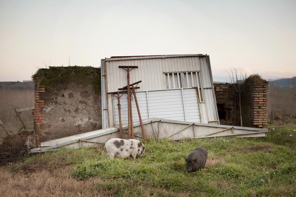 Sui terreni destinati all'attività agricola e di allevamento ora pascolano solo animali non destinati all'uso alimentare e la regione Lazio incentiva gli agricoltori alla coltivazione di alberi di pioppo in quanto, secondo recenti ricerche, limiterebbe l'assorbimento di metalli pesanti da parte del terreno stesso.Colleferro, dicembre 2013
