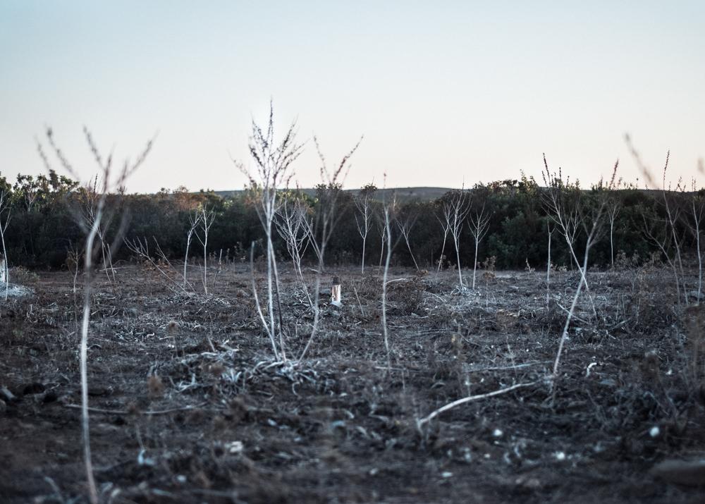 Bersagli, Area C, comune di Villaputzu, poligono a terra.