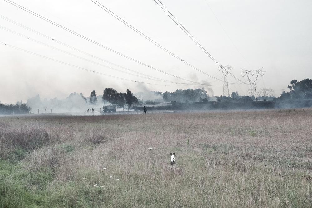 Campi in fiamme nei pressi della centrale nucleare di Borgo Sabotino (LT), 2015