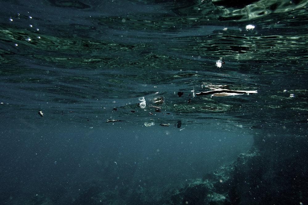 """42° 06' 16.6"""" N, 15° 29' 00.7"""" E, Cala di Zio Cesare, San Domino, Isole Tremiti  Plastiche e frammenti di microplastiche galleggianti in superficie. Una ricerca portata avanti dall'Istituto di Scienze Marine del Cnr di Genova (Ismar), dall'Università Politecnica delle Marche (Univpm) e da Greenpeace Italia, ha riscontrato che nell'area marina protetta delle Diomedee, i valori delle microplastiche presenti in mare raggiungevano livelli quasi pari a quelli della stazione di Portici a Napoli (2,2 contro 3,56 frammenti per metrocubo)."""