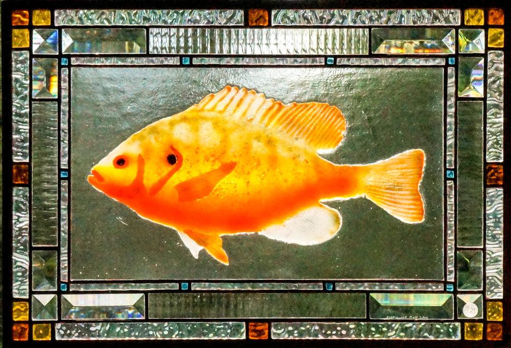 Fish - Sunny.jpg
