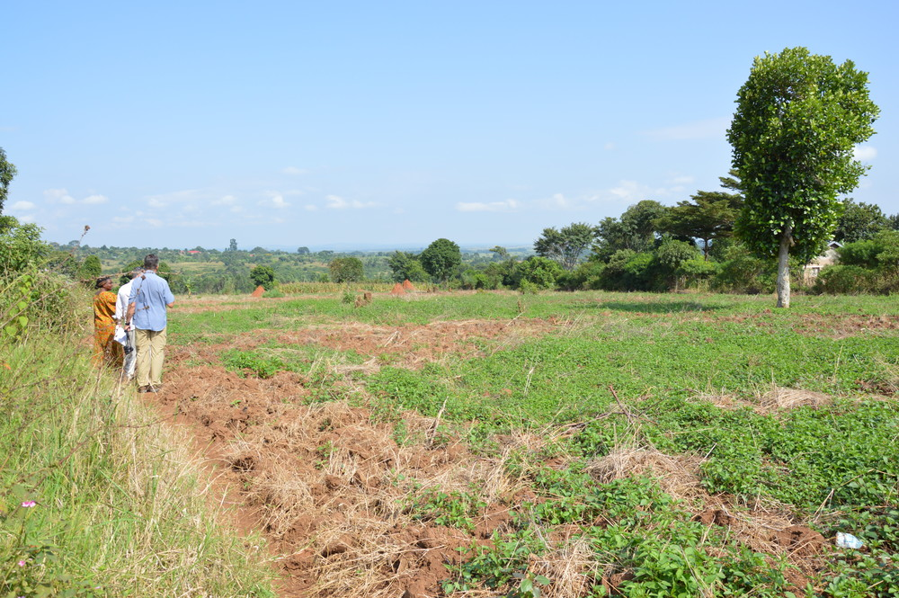 Land for new classroom block