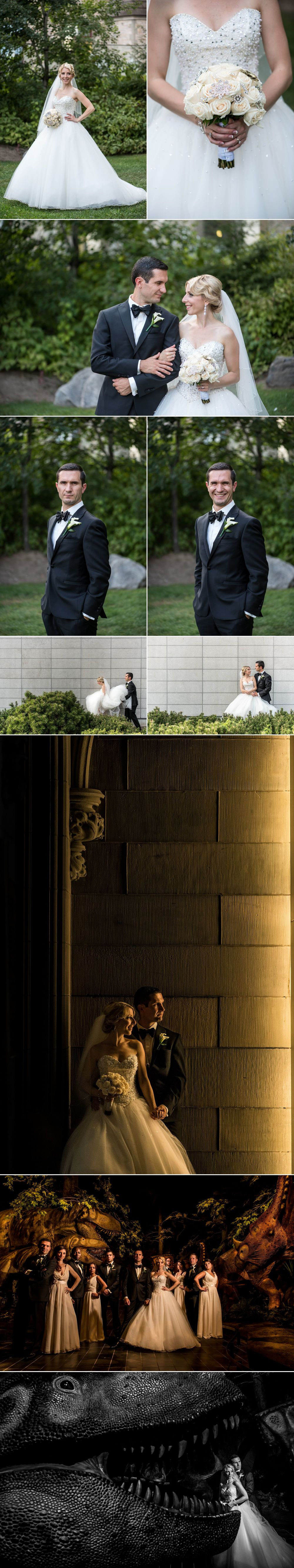 Wedding photographs at the Museum of Nature in Ottawa