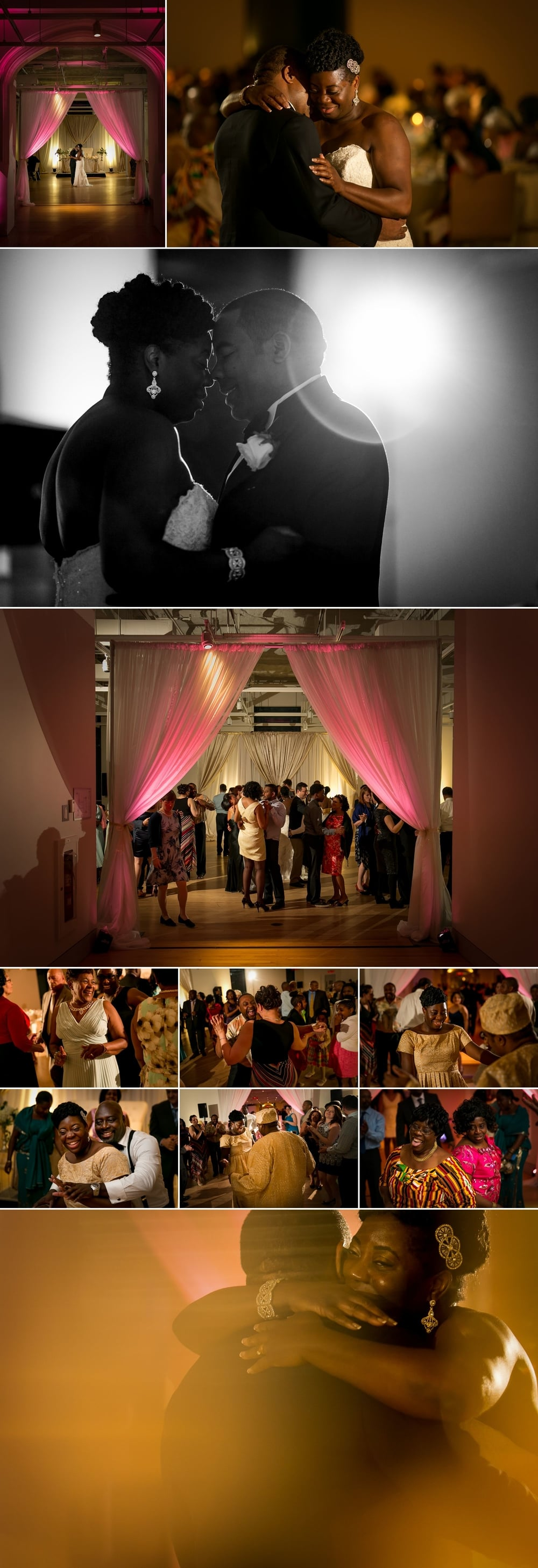 Nigerian wedding reception at the museum of nature in ottawa