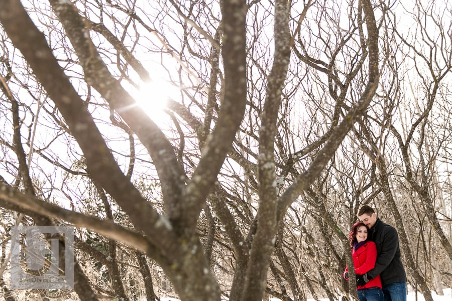 couples portrait in the trees at the arboretum