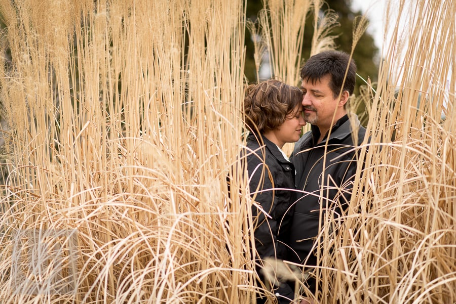man and woman embracing in wheat field at experimental farm