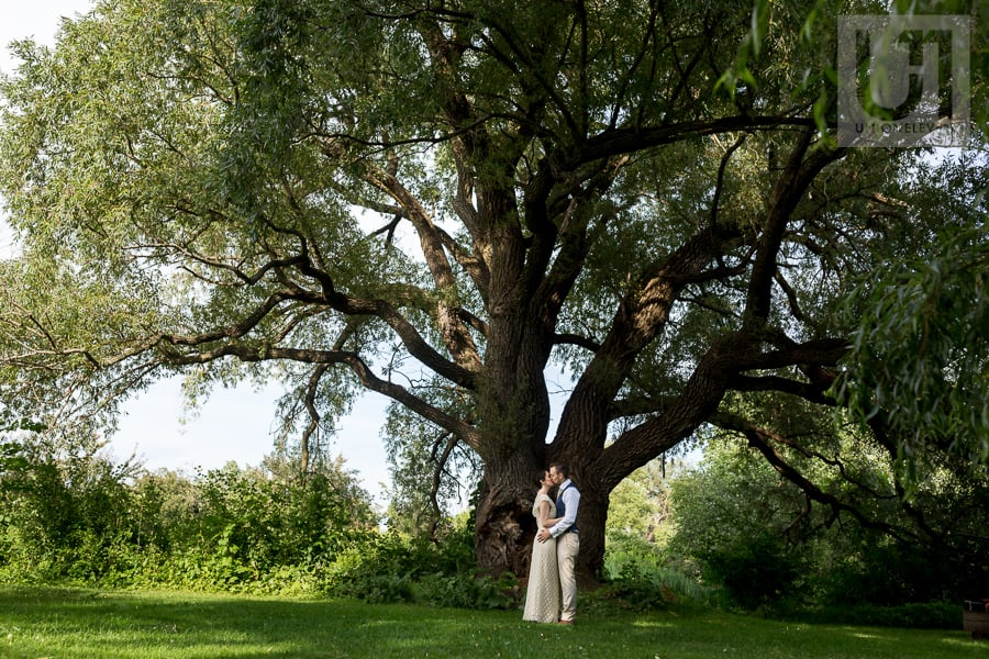 Bride and groom kissing in front of massive tree at the Arboretum in Ottawa.
