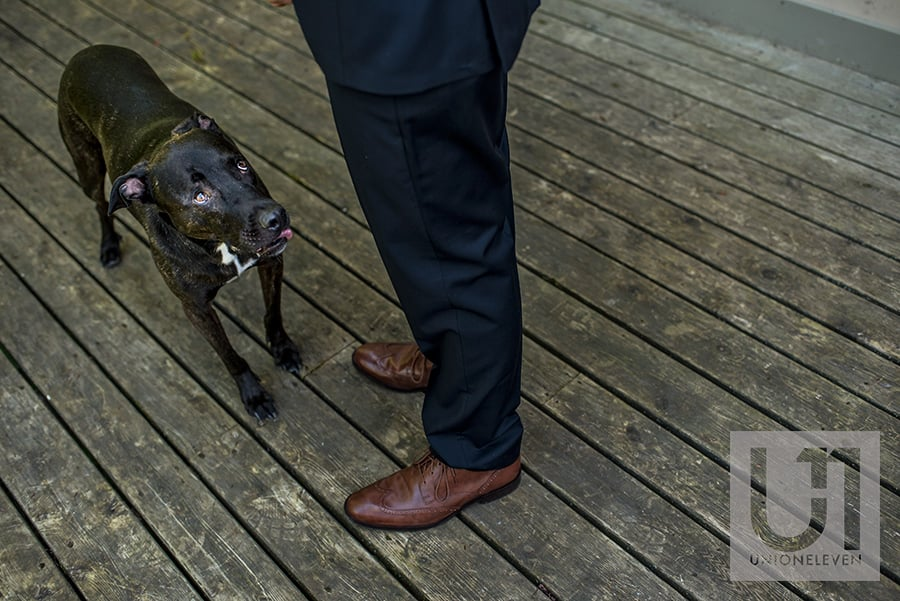 groom and his dog le belvedere wedding