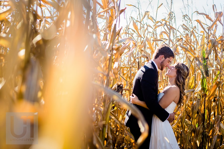 Bride and groom standing in an embrace, facing each other and touching noses in a corn field in Russell.