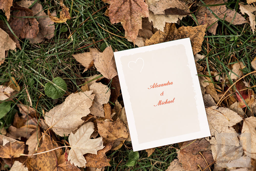 A wedding invitation for Alexandra and Michaels Wedding
