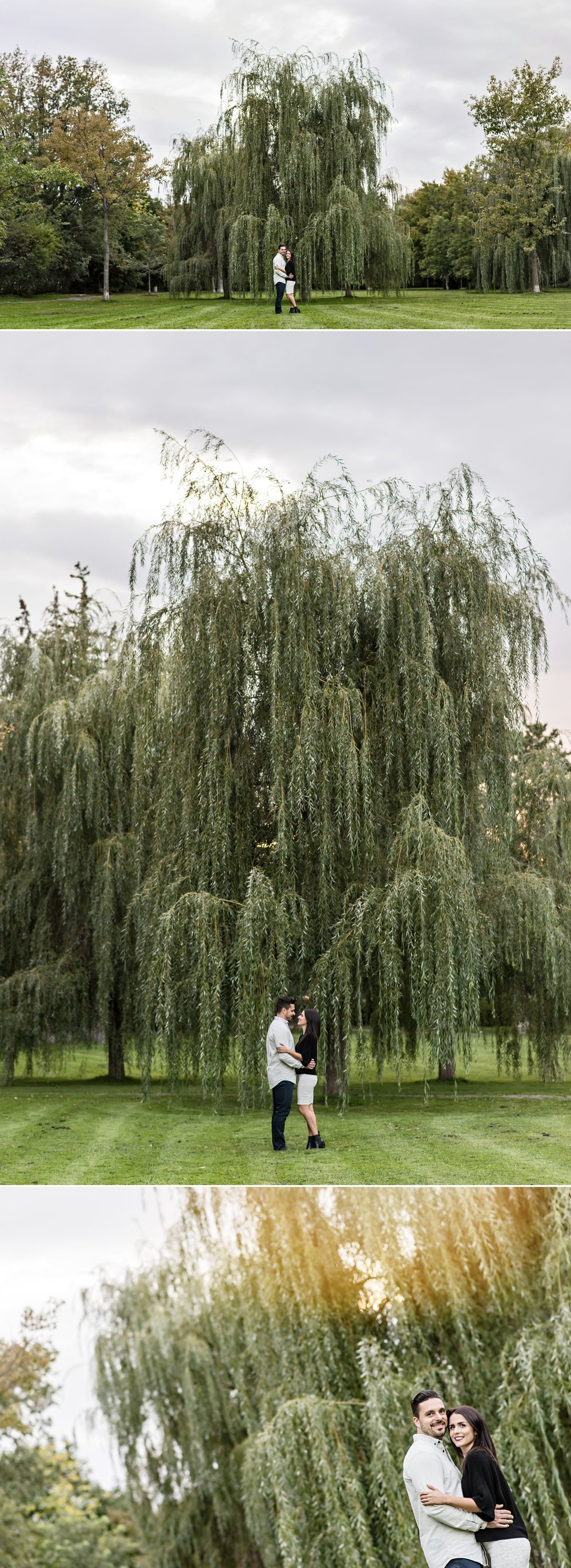 Portraits for a couple's engagement under the willow trees in a centretown park in Ottawa