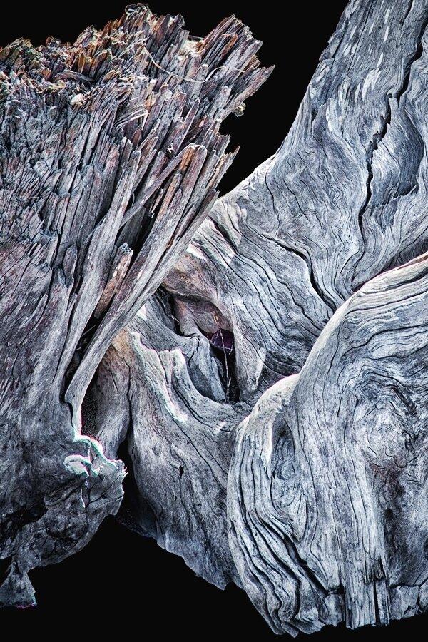 Driftwood Detail E