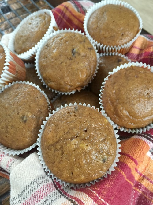 chocolate chip pumpkin muffins2