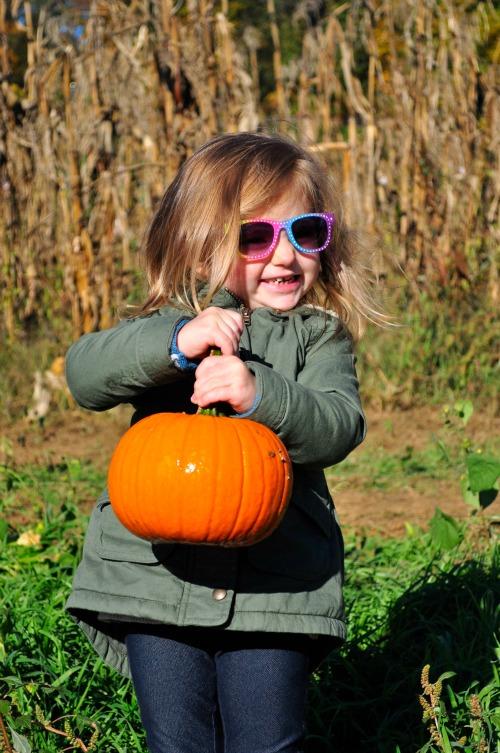 pumpkin pick 15 penelope1