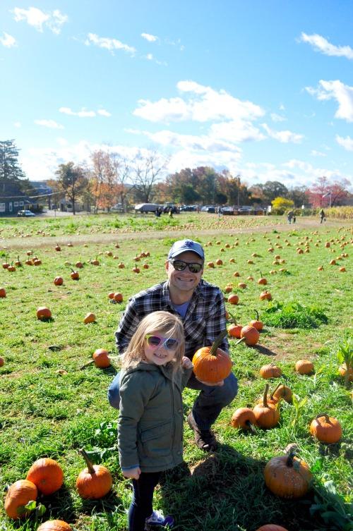 pumpkin pick 15 penelope2