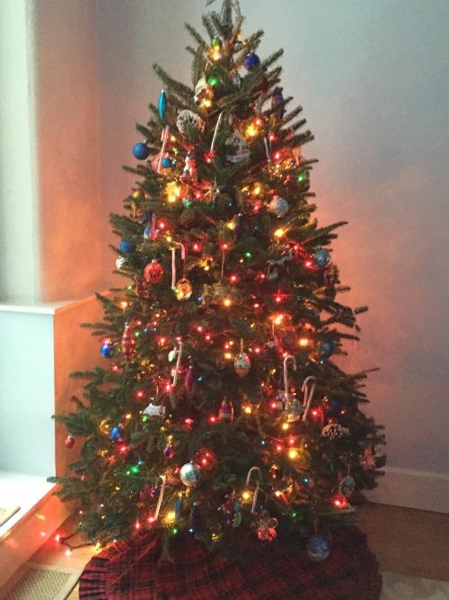 christmas 15 tree11