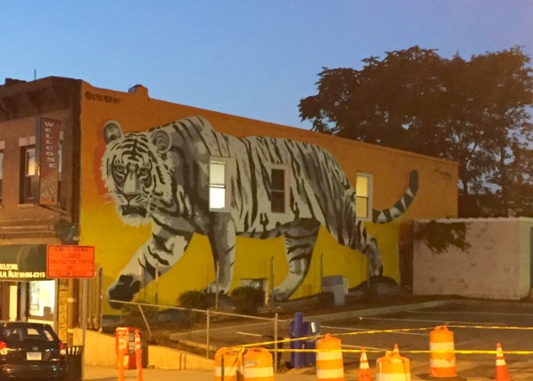 the most awesome/moodiest tiger mural in my neighborhood