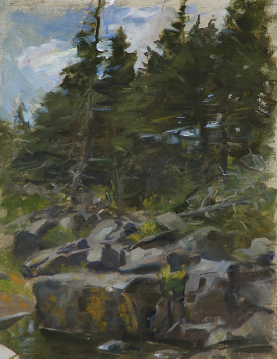 "Rocks and Trees, Gull Cove   , oil on linen, 14"" x 11"""