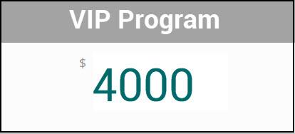 VIP-4000.jpg