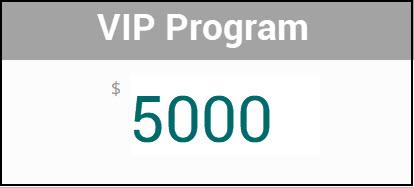 VIP-5000_2.jpg