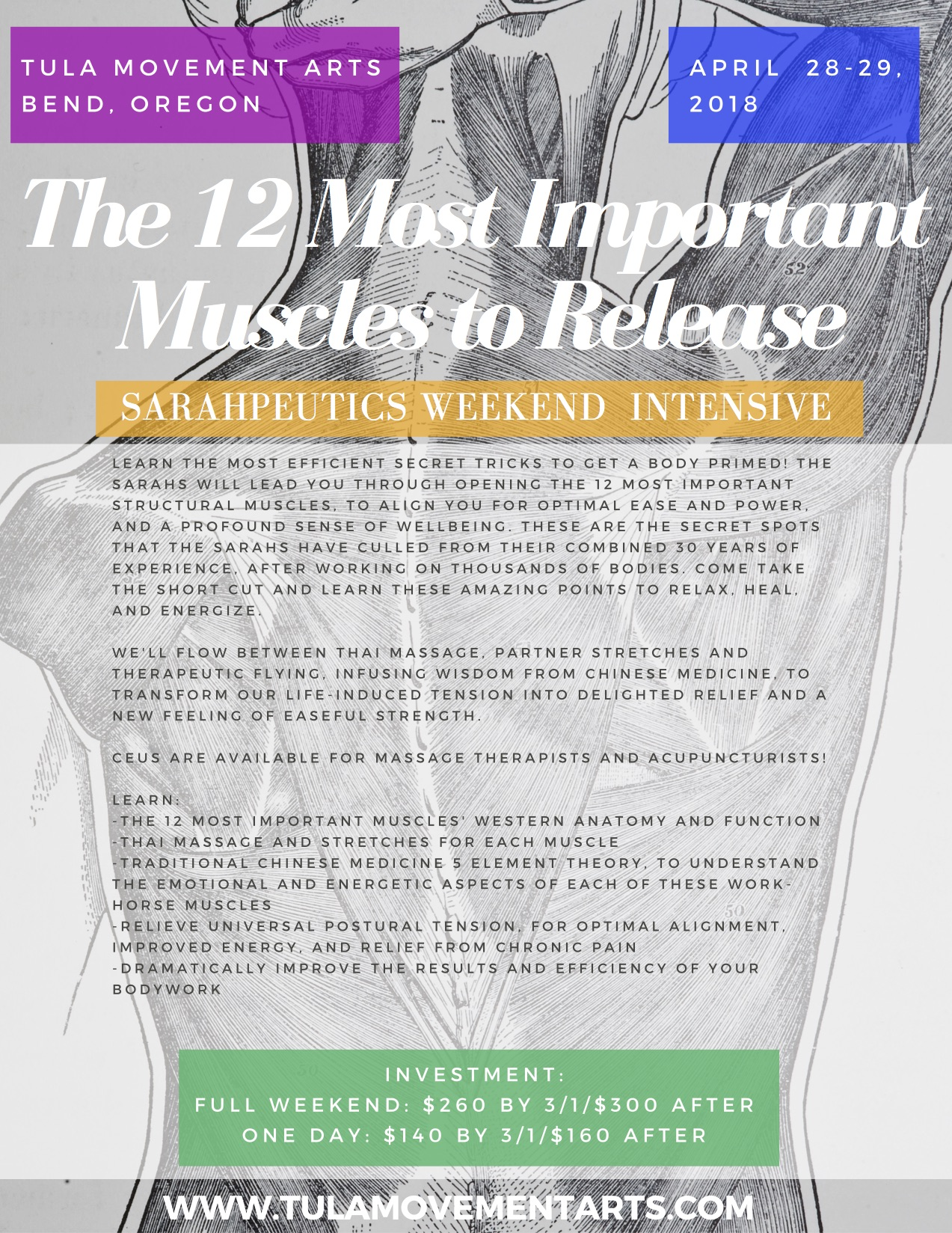 Get Optimal Bend 12 Most Important Muscles To Release Sarahpeutics