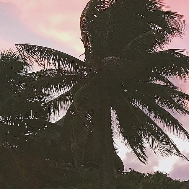 Pink - Tulum, Mexico