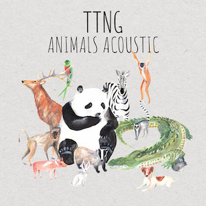 TTNG : Animals Acoustic