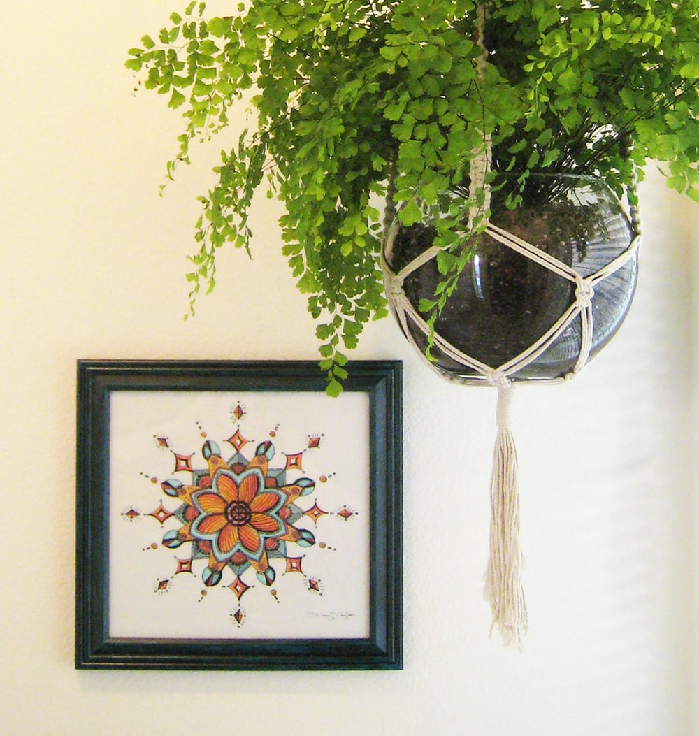 Decorating With Houseplants - 5 Reasons to Add Plants To Your Home