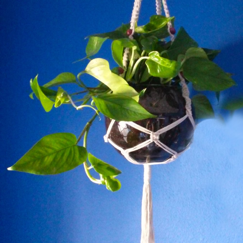 Handmade macrame plant hangers by Stacey Taylor of Effortlessly Eclectic