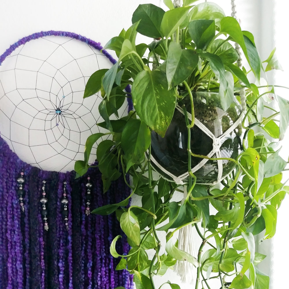 Easy to care for houseplants for eclectic home - pothos - with Purple Haze Dreamcatcher - Effortlessly Eclectic Art & Decor