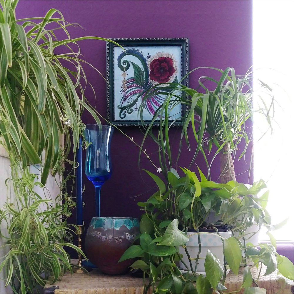 Easy to care for houseplants for eclectic home - with Celeste La Fleur original art - Effortlessly Eclectic art & home decor blog