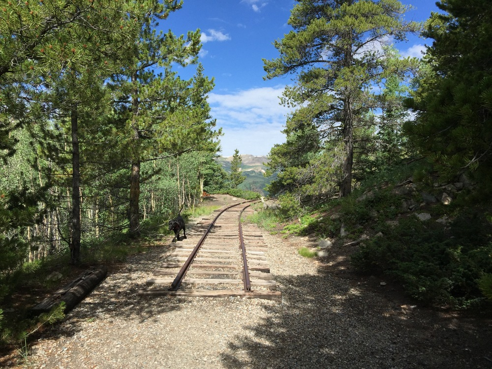 Rocky Point - Restored section of the original narrowgauge track