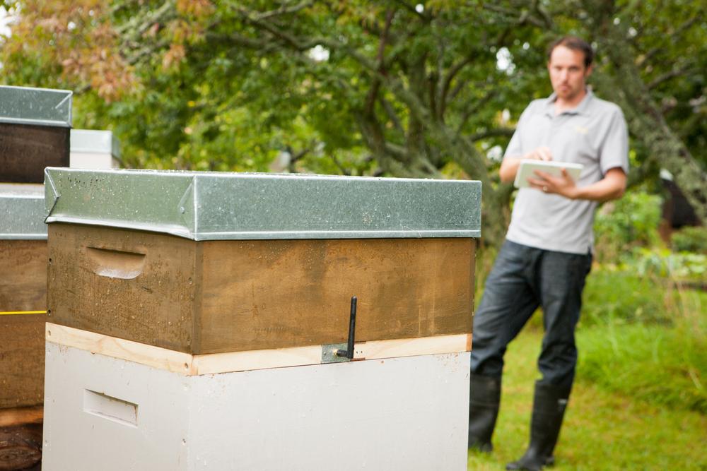 Buzztech hive agritech