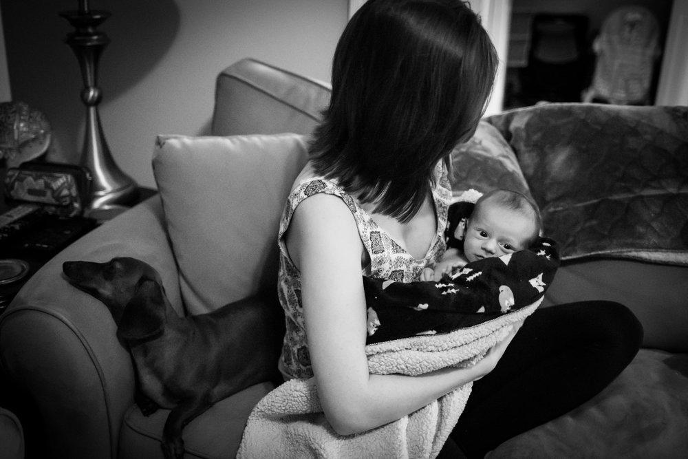 jacksonville-newborn-photographer-18.jpg