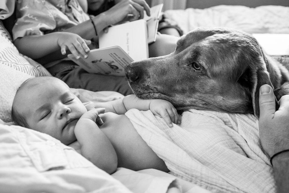 jacksonville-newborn-photographer-28.jpg