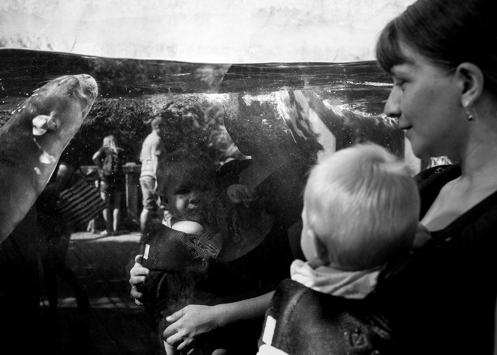 jacksonville-family-photographer-8 copy.jpg