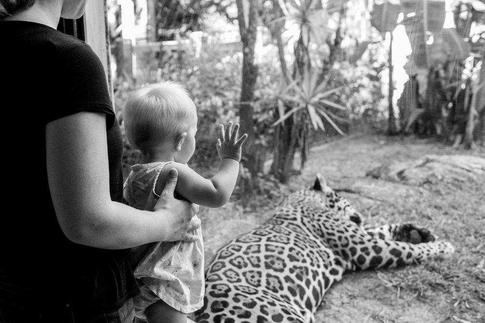 jacksonville-family-photographer-42.jpg