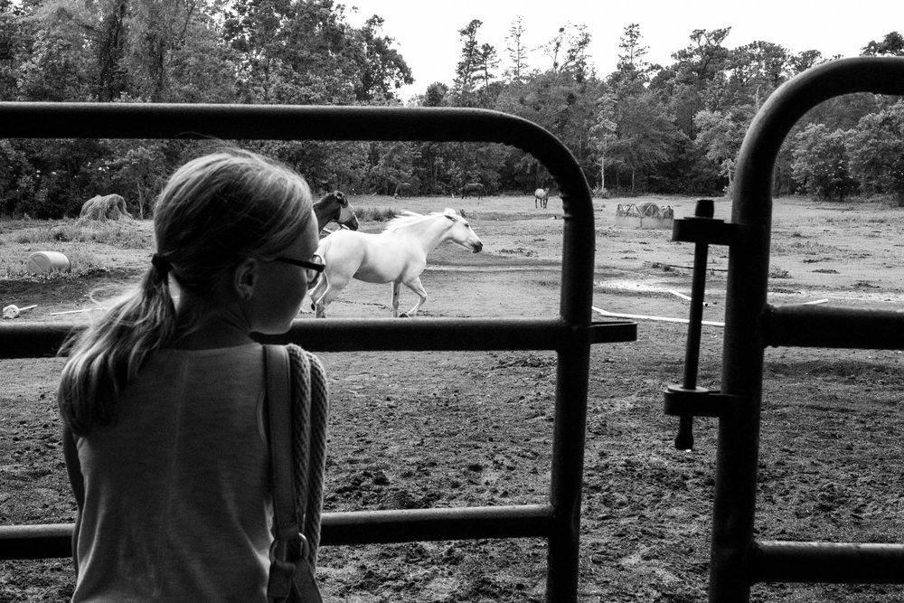 girl watching her horse ride away