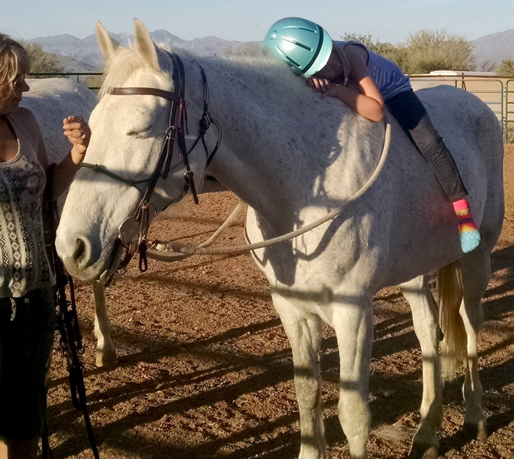 Lady Gray They felt that I had so much potential to make a difference somehow, that they sheltered me from the normal duties of a mare at a breeding barn. Funny enough, I learned how to be a stallion rather than a mare. Continue →
