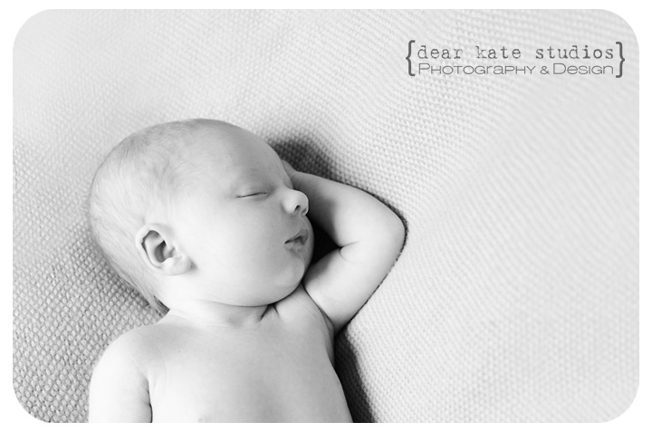 Northern Colorado Newborn Photographer