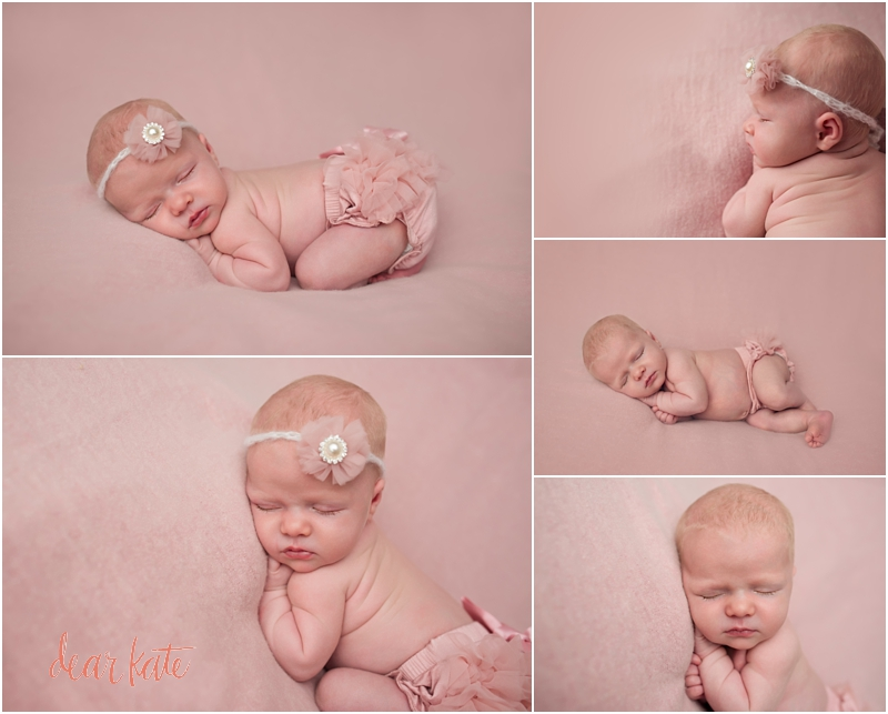 Newborn in pink tutu loveland infant pictures