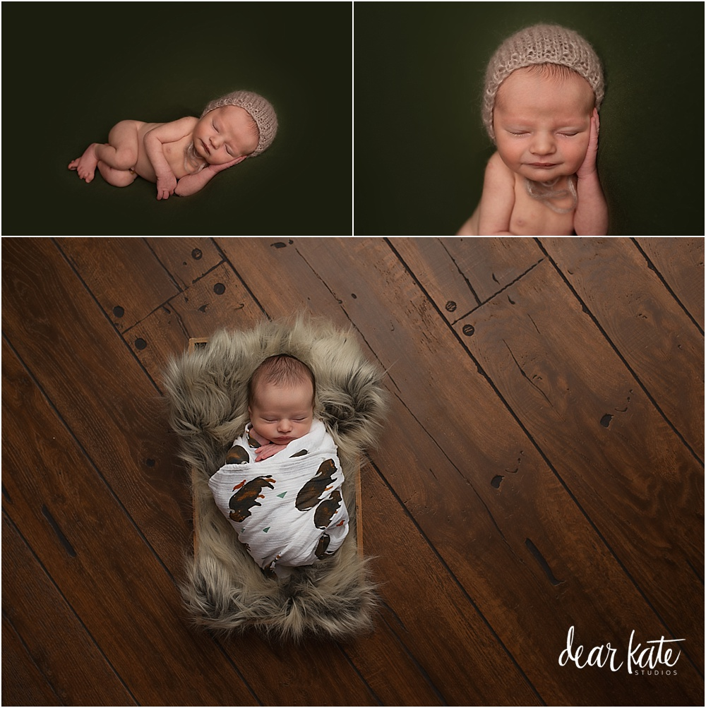 Classic newborn baby photography fort collins colorado