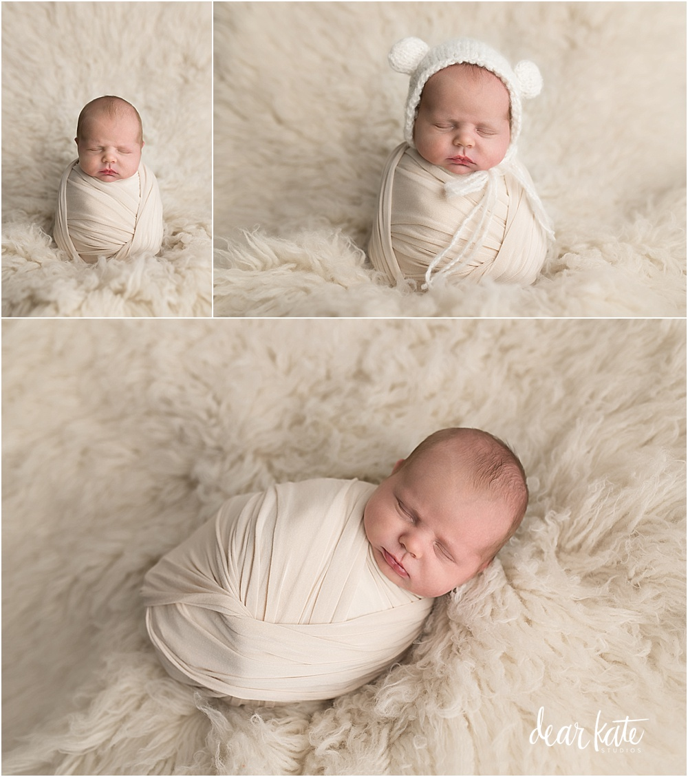 Baby Bear newborn pictures loveland colorado