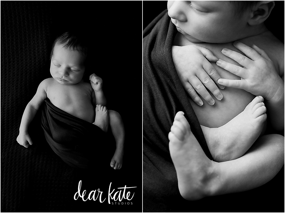 windsor Colorado newborn baby photography