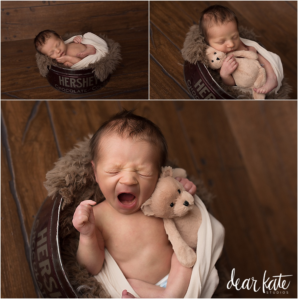 baby with tiny teddy bear jellycats honey bear newborn baby photography windsor colorado