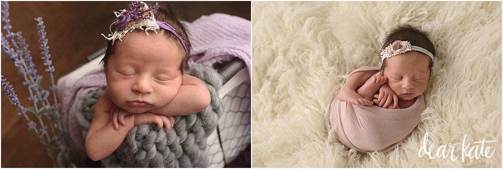 Fort Collins premature baby girl newborn pictures
