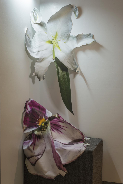 Ben Langford  Flowers , 2014 Canvas print