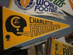 000c3572feaec012db77ab730f0c6cbf--charlotte-hornets.jpg